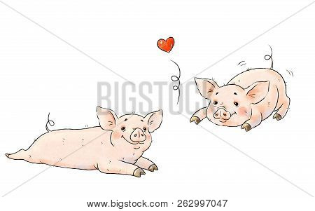 Hand drawn naughty pigs. Two cute funny piglets isolated on white background. Pig Chinese zodiac symbol of the year stock photo