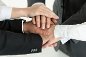 Closeup Of Business Team Showing Unity