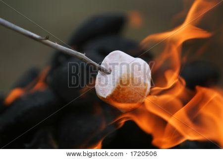 marshmallow on a stick being roasted over a camping fire stock photo