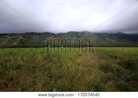 Maui Hawaii. Maui Mountains facing west from Kahalui  stock photo