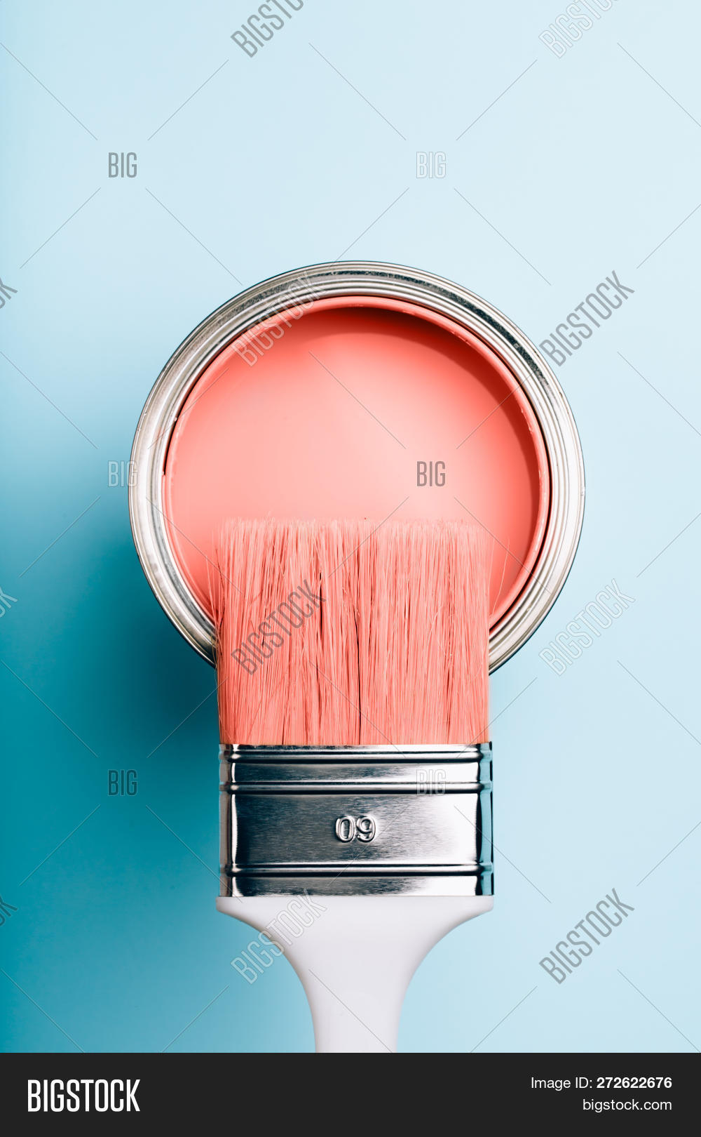 2019,Background,Color,Optimism,Palette,above,authentic,beautiful,black,blue,bright,brush,can,closeup,colorful,concept,copyspace,coral,coy2019,daily,design,flatlay,handle,home,house,hype,interior,life,lifestyle,live,macro,main,mood,open,orange,paint,pink,renovation,repair,style,trend,varnish,vertical,vibrant,year