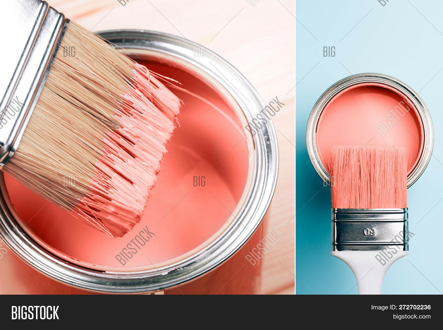 16-1546,2019,Background,Color,Optimism,authentic,beautiful,blue,bright,brush,can,collage,colour,concept,coral,coy2019,creative,daily,design,fashion,floor,home,hype,inspiration,interior,life,lifestyle,live,livingcoral,macro,main,many,media,mood,orange,paint,paintbrush,renovation,repair,set,social,style,table,tone,trend,varnish,vertical,vibrant,year
