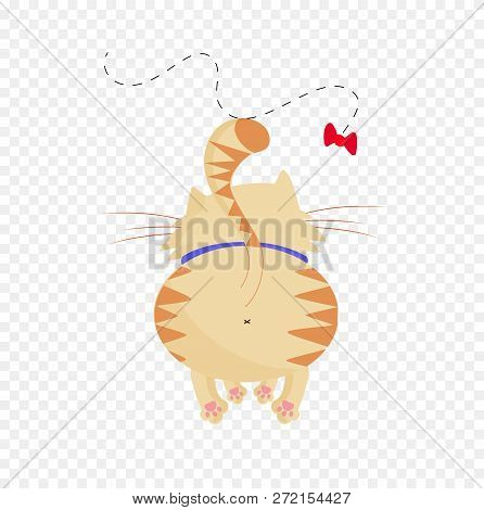 Vector illustration of cute cartoon ginger male cat boy character back side view playing with butterfly trying to catch it on transparent background clip art. Naughty cat's life routine situation. stock photo