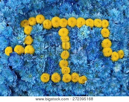 the flag of the Crimean Tatar people is Made of yellow and blue flowers. Crimean Mejlis coat of arms, composition from yellow and blue flowers.. stock photo