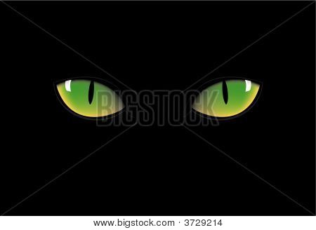 green cat eyes in dark night for halloween stock photo