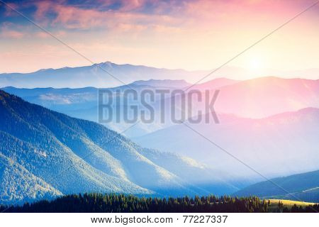 Majestic panorama of green mountains with sunny beams. Dramatic scene. National Park, Carpathian, Uk