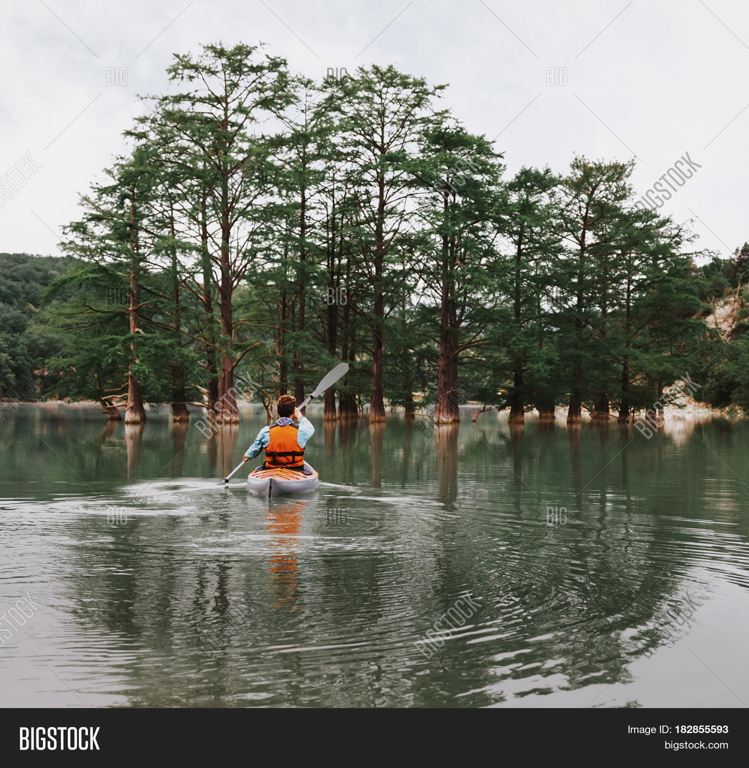 Unrecognizable young man paddling in kayak on lake on background of beautiful cypresses in summer rear view.