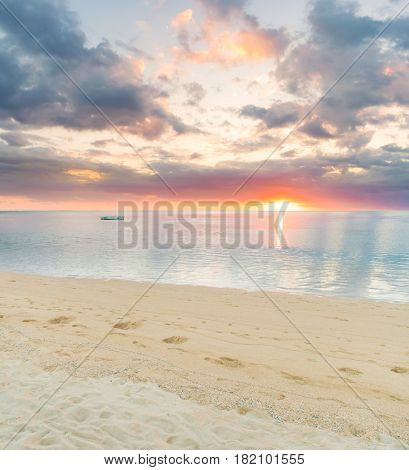 Sandy tropical beach at sunset.  Mauritius-Lg Fridge Magnet Skin (size 36x65)