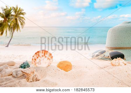 Summer accessories on sandy in seaside summer beach with starfish shells coral on sandbar and blur sea background. Concept of recreation in summertime on tropical beach. vintage color tone styles.