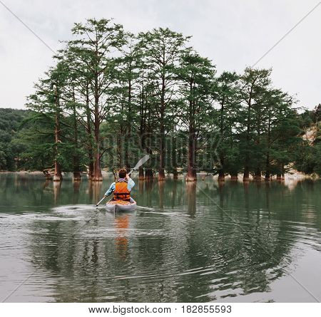 Unrecognizable young man paddling in kayak on lake on background of beautiful cypresses in summer rear view. stock photo