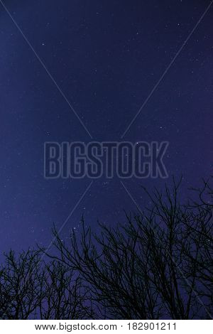 Clouds passing in the moon light by over a forest and on a night sky full of stars. stock photo