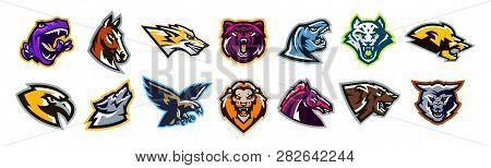 Set Of Animal Logos. Bear, Dinosaur, Eagle, Leopard, Wolf, Horse, Fox, Lion, Grizzly, Raptor, Hawk,