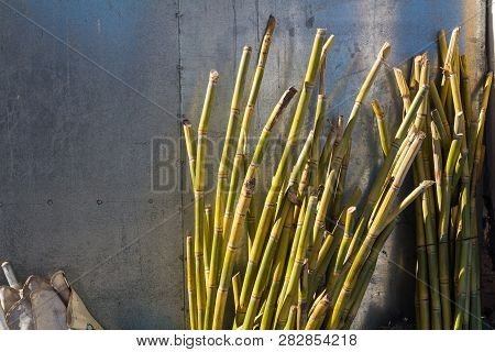 Bamboo stems enlightened by the sunlight, ready to prepare a juice from them. Alluminium fence in the background. Street in Essaouira, Morocco. stock photo