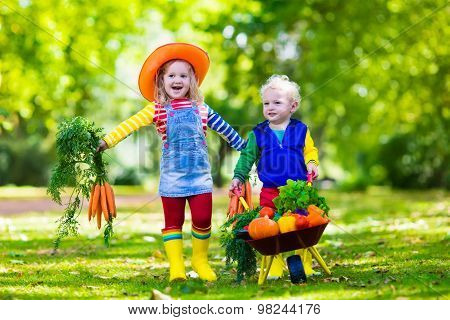 Kids Picking Vegetables On Organic Farm