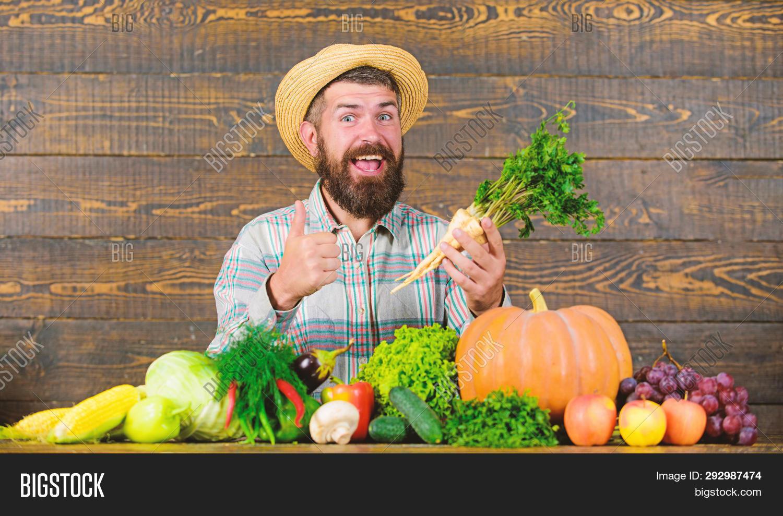 Man Cheerful Bearded Farmer Hold Horseradish Wooden Background. Farmer Straw Hat Presenting Fresh Ve