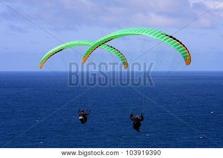 paragliders flying their wings above the sea