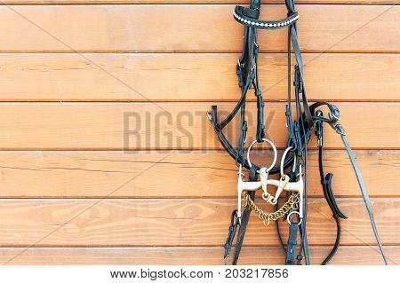 Horse bridle with decoration hanging on stable wooden wall. Front view. Closeup outdoors horizontal image with copy space. stock photo