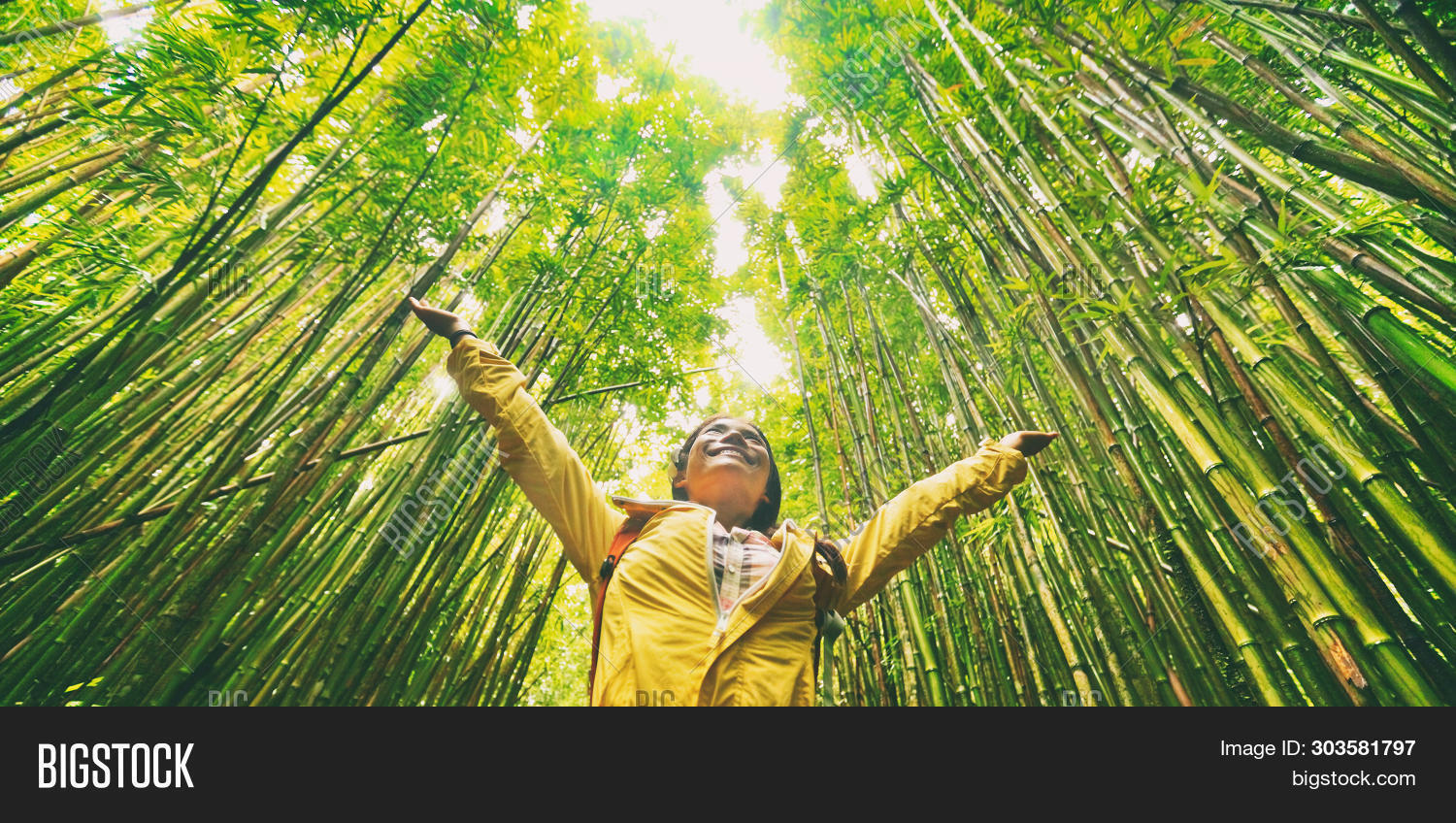 Sustainable eco-friendly travel tourist hiker walking in natural bamboo forest happy with arms up in