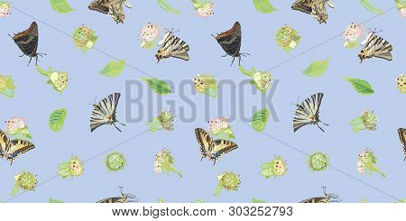 Blue brambleberry and butterfly seamless pattern print background with blossom and leaf. Perfect for wallpaper, paper project, food packaging, kitchen design. Surface pattern design. stock photo