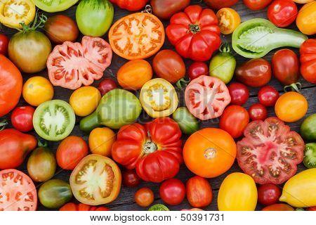 Tomates colorées