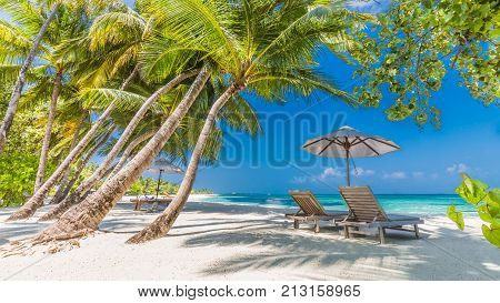 Perfect beach view. Summer holiday and vacation design. Inspirational tropical beach, palm trees and white sand. Tranquil scenery, relaxing beach, tropical landscape design. Moody landscape