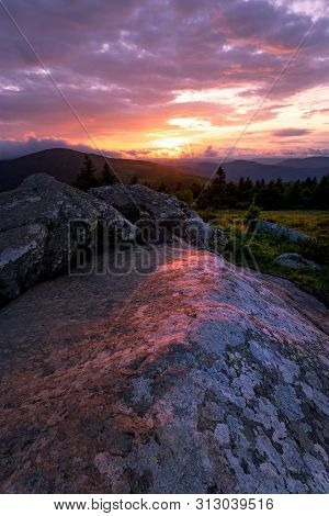 Sunset along the Appalachian Trail on top of Grassy Ridge Bald at the Roan highlands. stock photo