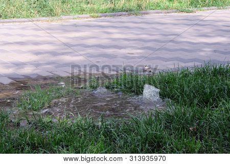 Emergency sewage. Water flows down the sidewalk from the sewer. An accident in the sewer. Water fountain flows out of the hatch located on a green grass lawn next to the sidewalk. Breakthrough sewage. stock photo
