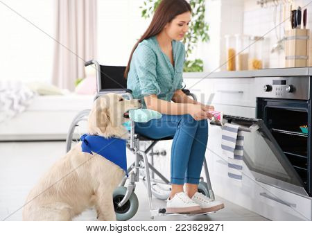 Woman in wheelchair cooking with service dog by her side indoors stock photo