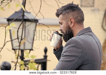 Businessman bearded guy drink coffee outdoors. Hipster hold paper coffee cup and enjoy park environment. Relaxing coffee break. Drink it on the go. Man bearded hipster prefer coffee take away. stock photo