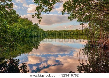 Coot Bay Pond in Everglades National Park. Florida. USA stock photo