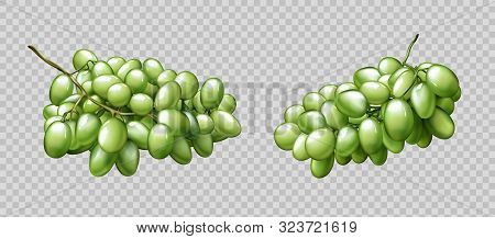 Realistic grapes bunches set isolated on transparent background, ripe green berries graphic element for natural fruit juice or wine advertising or package design 3d vector illustration, icon, clip art stock photo