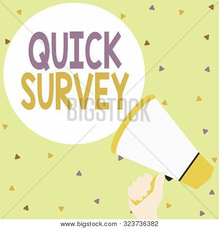 Handwriting text writing Quick Survey. Concept meaning Conduct fast check on condition value situation of something Hand Holding Loudhailer Empty Round Speech Text Balloon Announcement New. stock photo