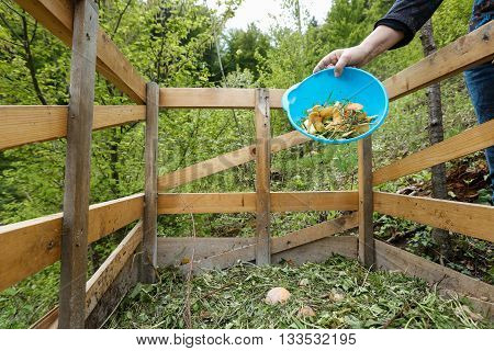 Organic kitchen waste being thrown on a homemade compost in the garden. Natural gardening waste sorting food wasting concept.