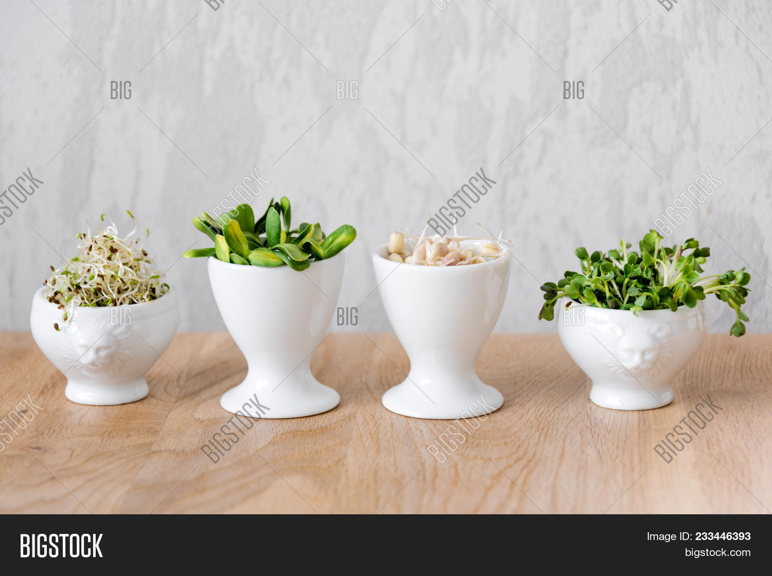 Different Types Of Micro Greens In White Bowls For Sauces On