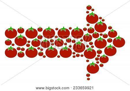 Right Arrow composition of tomatoes in various sizes. Vector tomatoes items are organized into right arrow composition. Tomatoes vector design concept. stock photo