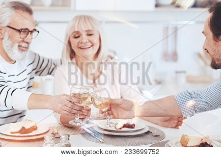 Enjoyable time together. Positive smiling loving aged parents drinking wine with their son while sitting in the kitchen and having family celebration stock photo