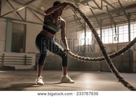 Fitness Woman Using Training Ropes For Exercise At Gym. Athlete Working Out With Battle Ropes At Cro