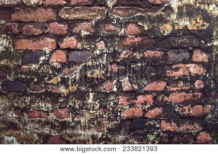 Old red and black ancient bricks texture , vintage wallpaper have sunlight on wall and dark mold stock photo