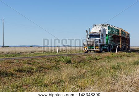 Road train / semi-trailer taking livestock to market in outback Queensland with copyspace stock photo