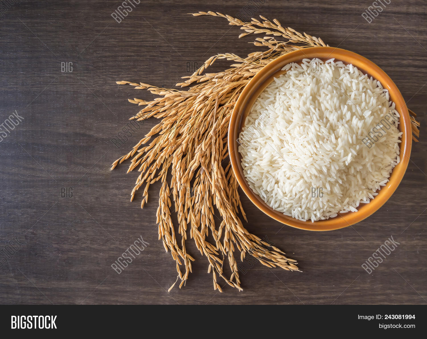Raw White Rice (thai Jasmine Rice)  In Brown Bowl And And Ear Of Rice Or Unmilled Rice On Wooden Bac