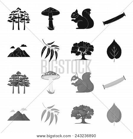 Mountain, cloud, tree, branch, leaf.Forest set collection icons in black, monochrome style vector symbol stock illustration . stock photo