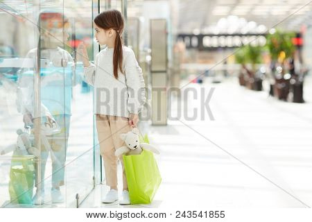 Cute little girl with teddybear in paperbag looking through transparent shop-display of toy department stock photo