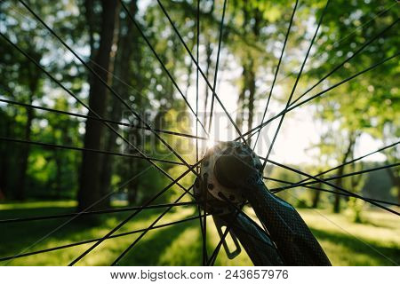 Bicycle wheel close-up, knitting needles, carbon fork against the background of sunset rays. stock photo