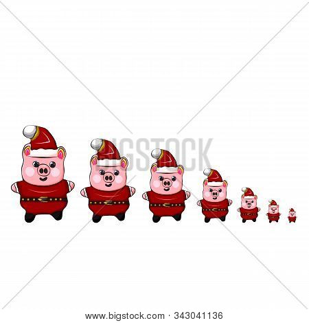 Funny group of animals piggy family full length different ages in new year hats with pompoms standing in a row in the centre isolated background. Piggy family concept, parents with children. stock photo