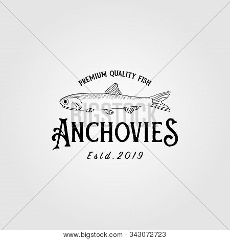 anchovies anchovy fish vintage logo label emblem packaging vector icon seafood design stock photo