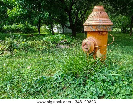 A Shot of a Fire Hydrant Amidst Overgrown Grass stock photo