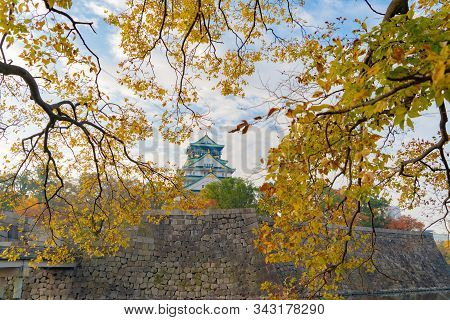 Osaka Castle building with colorful maple leaves or fall foliage in autumn season. Colorful trees, Kyoto City, Kansai, Japan. Architecture landscape background. Famous tourist attraction. stock photo