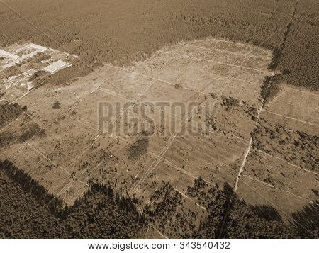 Deforestation. Ecology of Ukrane.The fate of the felled pine forest. Ukraine is increasing timber exports to the European Union after the 2014 coup. (drone image). Near Kiev,Ukraine stock photo
