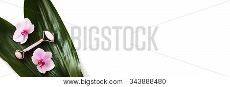 Background with jade roller massage tool, green leaves and orchids. Isolated on white background with copy space. stock photo