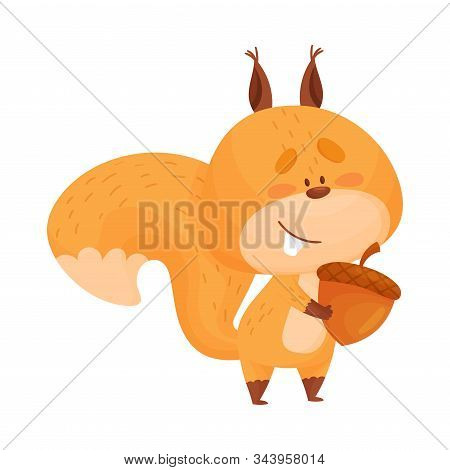 Funny Squirrel Character Holding Favorite Acorn in Its Paws Vector Illustration stock photo